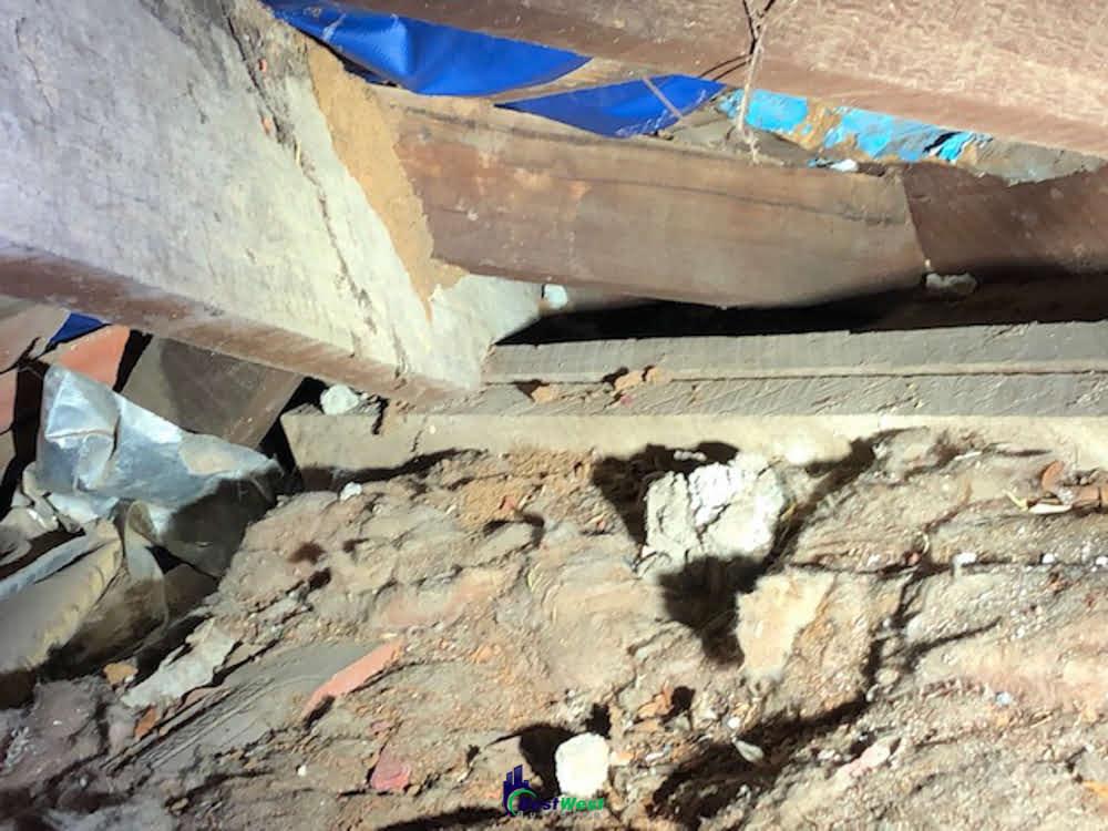 Extreme Termite Damage